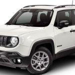 Jeep-Renegade-sport-wild